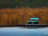 Le banc bleu