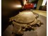Musée Les Mineurs 2012 Petite Rosselle