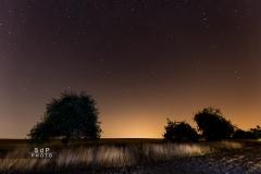 2015 Nuit étoilée
